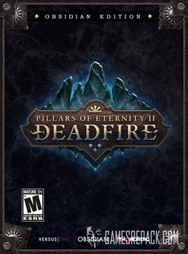 Pillars of Eternity II: Deadfire - Obsidian Edition (Obsidian Entertainment) (ENG/RUS/MULTI 9) [Repack] от R.G. Catalyst