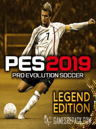 PRO EVOLUTION SOCCER 2019 / PES 2019 (Konami Digital Entertainment) (RUS|ENG|MULTi15) [L]